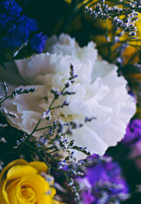 Beautiful white, yellow and purple flowers clustered together in a vase.